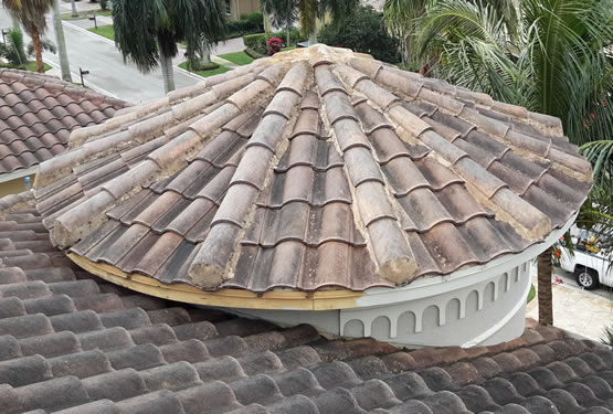 Roof Cleaning Soft wash