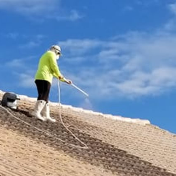 Roof Cleaning company